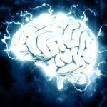 【脳は受信機】精神と思考と脳の関係【BASHAR】